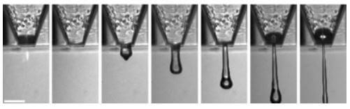 Auf der Webseite Golem.de erschien ein interessanter Artikel: Britische Forscher drucken Netzhautzellen Britischen Forschern ist es gelungen, zwei verschieden Zelltypen aus der Netzhaut mit einem Tintenstrahldrucker zu drucken. Mit der Technik könnte künftig eine kaputte Retina repariert werden. Forscher der Universität Cambridge haben ein Verfahren entwickelt, um Netzhaut künstlich herzustellen: Sie drucken sie… Mehr lesen…